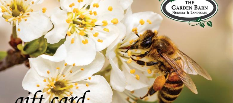 Garden Barn Gift Card - Honeybee
