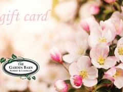 Garden Barn Gift Card - Cherry Blossoms