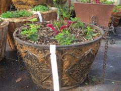 Garden Barn Grown Specialty Hanging Basket